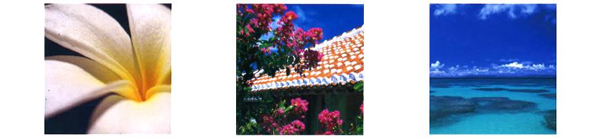沖縄カタログギフト「沖縄ギフトセレクション」|琉球ガラス村の公式オンラインショップ
