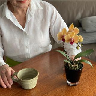 ただいま発売中の琉球ガラスと沖縄県産・胡蝶蘭のギフトセットがおかげさまで大好評!どうもありがとうございます。  現在、同梱できるギフトカードはThanks for everything.の一種類となっております。 日頃の感謝を込めて、大切な人や身近な方々へプレゼントしてはいかがでしょうか✨